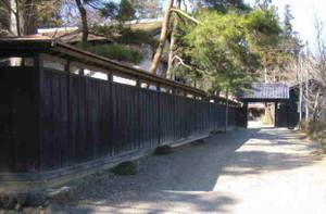Toubou501