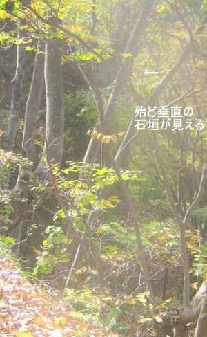 Image211_2